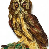 Long Eared Owl Card, Large well camouflaged bird.