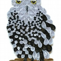 Snowy Owl Card, Female of the Species.