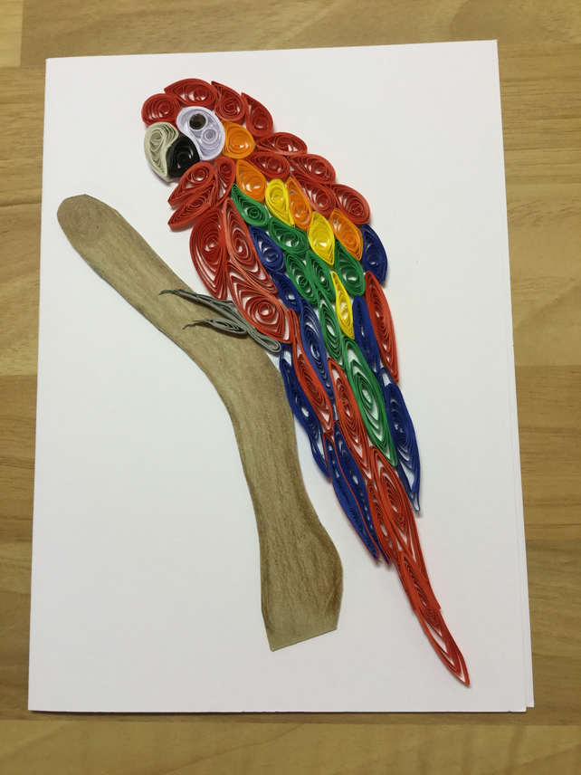 Scarlet Macaw Card, Parrot Lovers Card, Large Bird, Colourful Parrot