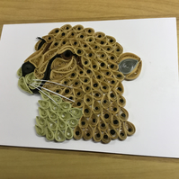 Cheetah Card, Wildlife Card, Fastest Land Mammal