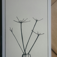 Hand drawn hogweed wildflower A6 greetings card