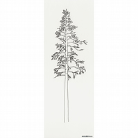 Scandinavian Pine Tree no.1 - limited edition print from pen drawing