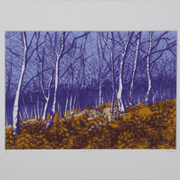 Winter Birch, original hand-pulled screen print