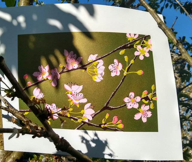 Apple Blossom Green, original hand-pulled screen print