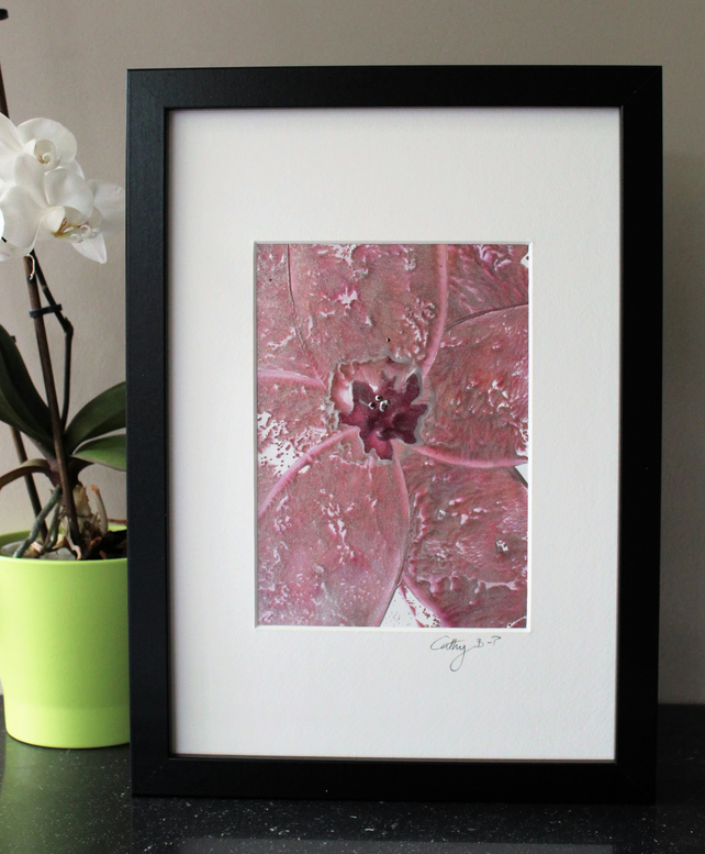 Beautiful encaustic wax flower in pinks and silver, mounted in a box frame.
