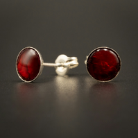 Red paua shell and sterling silver stud earrings, shell jewellery