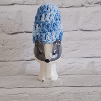 Blue Egg Cosy Pair