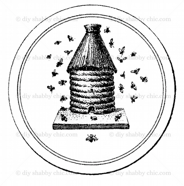 Furniture Wood Decal Vintage Image Transfer Antique Label French Beehive Diy