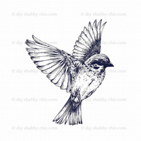 Furniture Wood Decal Vintage Image Transfer Antique Bird Fly Diy