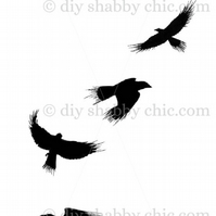 Furniture Wood Decal Vintage Image Transfer Antique Black Crows Diy