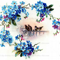 Furniture Wood Decal Image Transfer Antique Label Birds Forget Me Not Diy