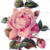 Furniture Wood Decal Image Transfer Antique Label Pink Vintage Rose Diy