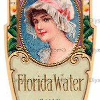 Furniture Wood Decal Vintage Image Transfer Antique Florida Water Diy Art