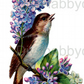 Furniture Wood Decal Vintage Image Transfer Antique Lilac Bird Diy