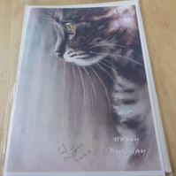 pack of 3 cat greetings cards