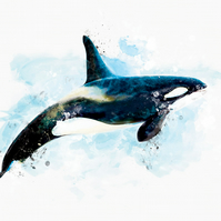 Orca Whale Print Decor Art