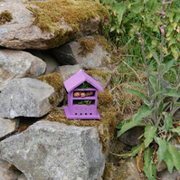 Purple Wooden Insect House - Bug Hotel - Gardening Gifts