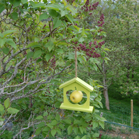 Lime Green Wooden Bird Feeder - Gardening Gifts