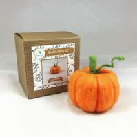 Mini Pumpkin - Needle Felting Kit