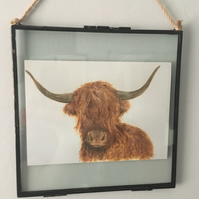 Hanging Glass Frame 8x8 with Highland Cow Print, Coo, Scottish