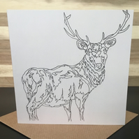 Greeting Card Square - Scottish Stag, Red Deer