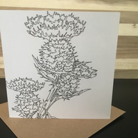 Greeting Card Ink Scottish Thistle, Flower of Scotland