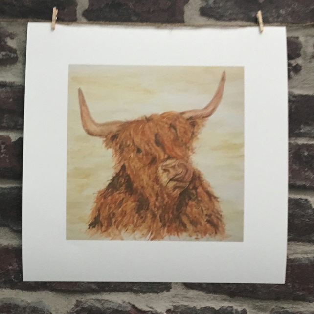 8x8 Print Unframed, Scottish, Highland Cow, Coo