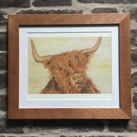 Framed Giclee Print, Scottish, Highland Coo, Cow, Solid Wood Frame.
