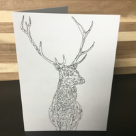 Greeting Card, Blank, Scottish, Red Deer, Stag