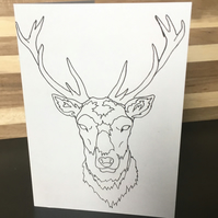 Greeting Card - Scottish Stag, Red Deer, Blank Card