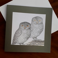 Two whit owls