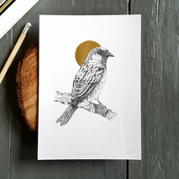Original House Sparrow Drawing with Gold Foil