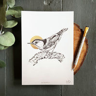 Original Nuthatch Drawing with Gold Foil