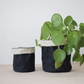 fabric planter - reversible - SMALL  size perfect for houseplants and cacti