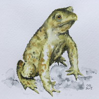 Toad Original Watercolour Painting