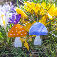 Colourful Toadstool Mushroom Fused Glass Plant Pot Decorations
