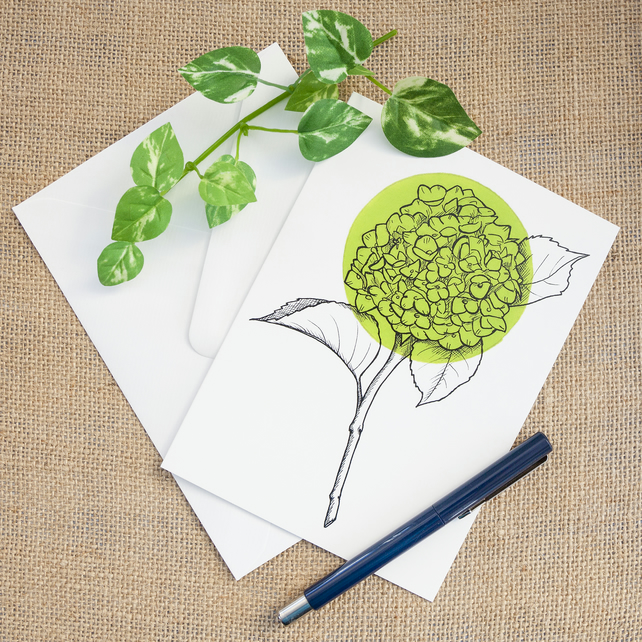 Light Green Hydrangea Flower Greetings Card Birthday Illustrated Card