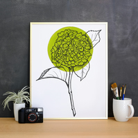 Minimalist Light Green Hydrangea Flower Illustration Fine Art Print