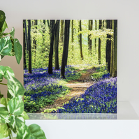 Bluebell Woods Blank Greetings Card wildflowers spring wildflowers woodland UK