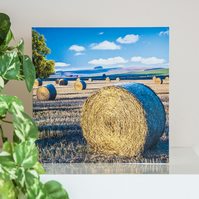 Hay Straw Bales Blank Greetings Card harvest late summer English countryside UK