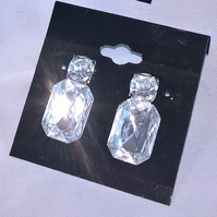 Diamond sparkle peirced earrings