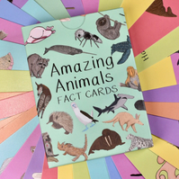Amazing Animals Fact Cards Set One