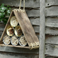 Triangle bee,bug house
