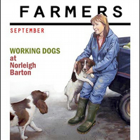 """Working Dogs"" (Devon Farmers series)."