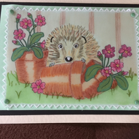 Wildlife Birthday Card