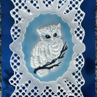 Owl Card, for the bird lovers