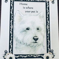 A Dog Lovers Card