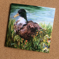 Blank card featuring duck from my original painting