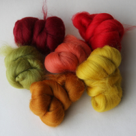 """Autumn Leaves"" Wool Pack -  Merino wool tops for felting in autumnal colours"