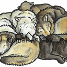 "GREY WOLVES - Original 10x8"" mounted ink wolf picture"